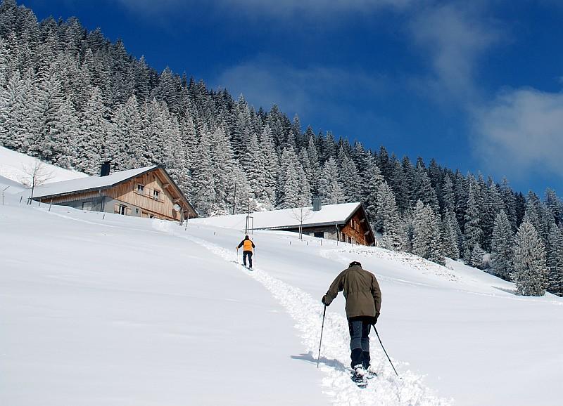 Schöne Mann Alpe bei Ebnit